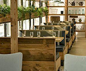 Decoracion restaurant verde Sanjhes